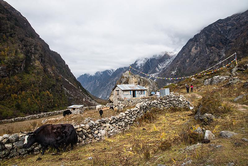 Kyangin Gumba-Lama Hotel