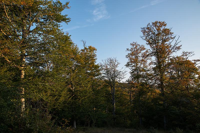 Ontzanburu, Beaskin, 12-09-17