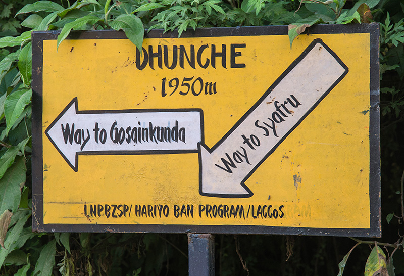 Dhunche - Cholang Pati 16-10-17