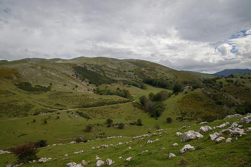Argarbi - Seles 2-10-13