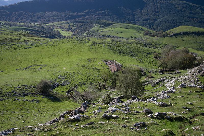 Seles Aralar (10) 31-10-13
