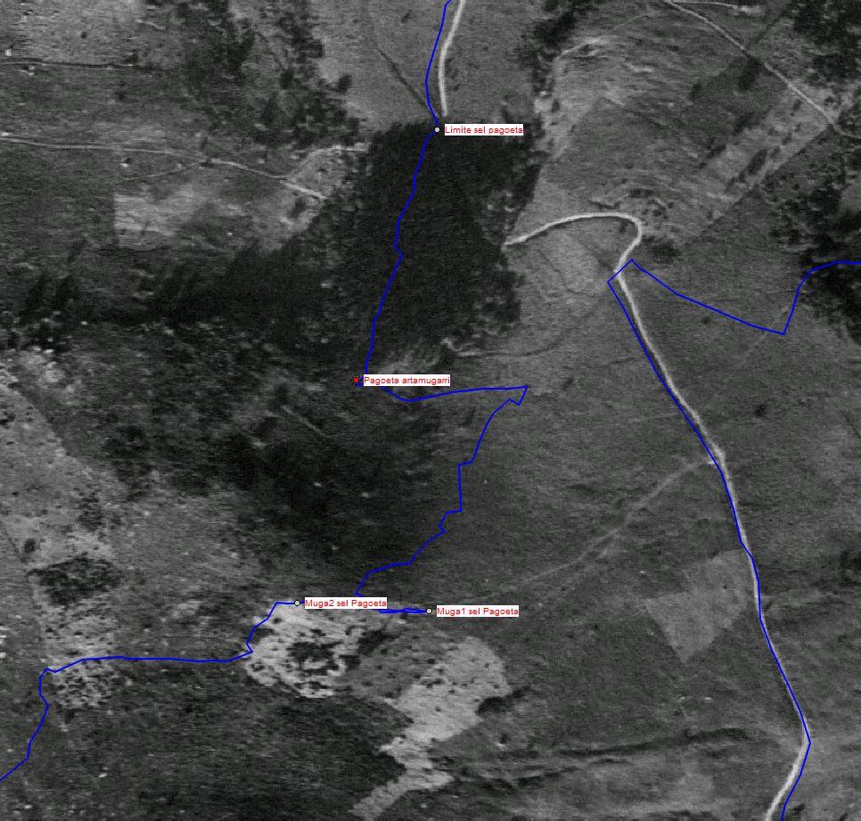Onyi, Argurutze, Seles 7-10-15