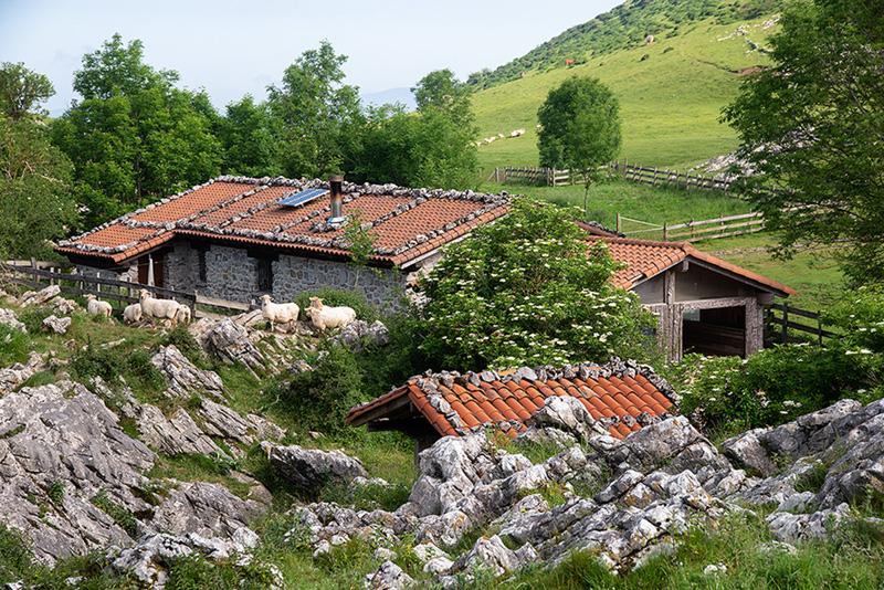 Argarbi 26-05-20