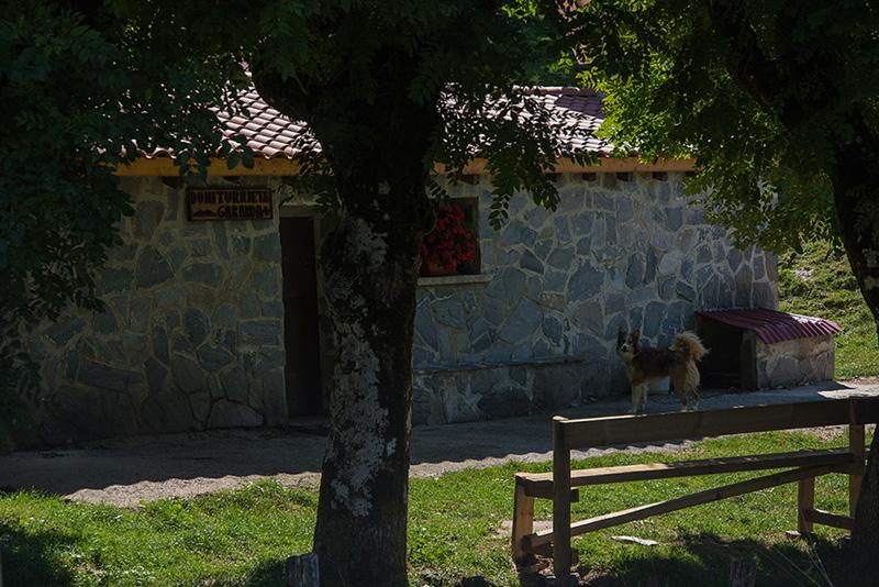 Errenaga - Seles 18-9-14