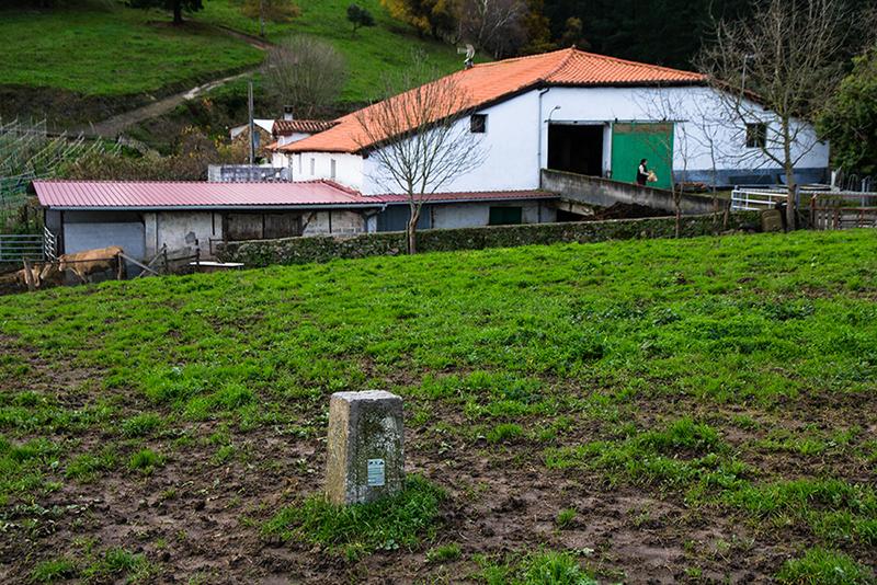 Sel de Burgo-18_12_!2