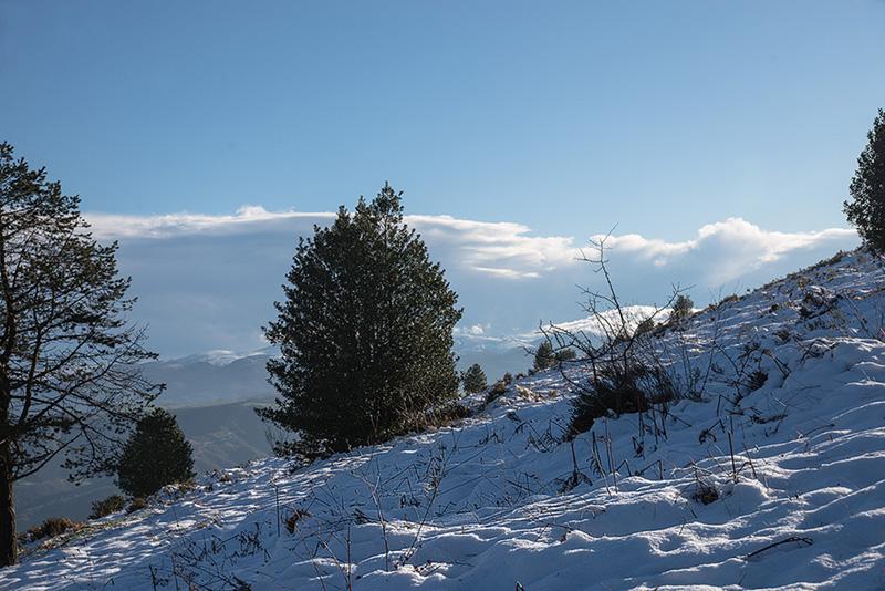 Alto del Corral - UMI 2