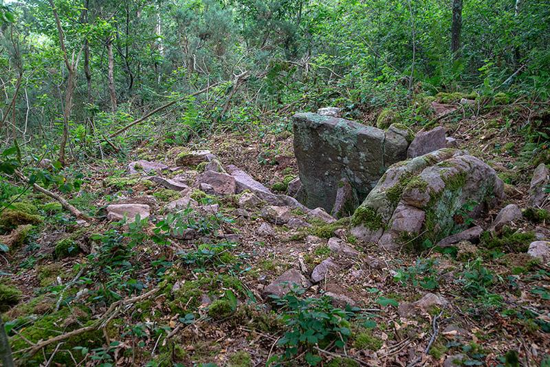 Dolmen Saraskorri y mugas