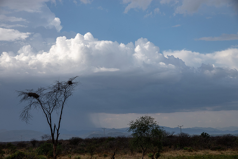 Crater del Sod-Manantial 31-08-19